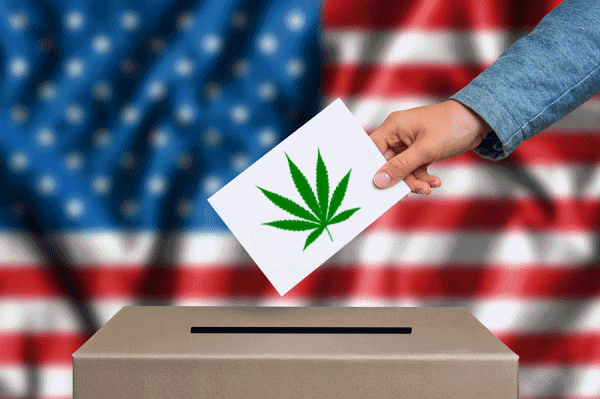 Marijuana Laws and the 2020 Election